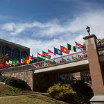 University of North Alabama's photo